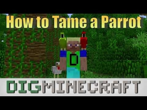 how to get a parrot on your shoulder in minecraft-2